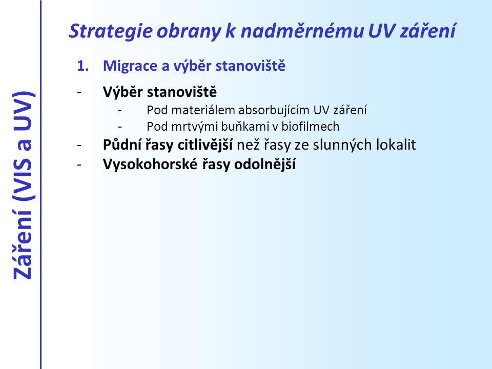 1.Migrace a výběr stanoviště -Výběr stanoviště -Pod materiálem absorbujícím UV záření -Pod mrtvými buňkami v biofilmech -Půdní řasy citlivější než řas
