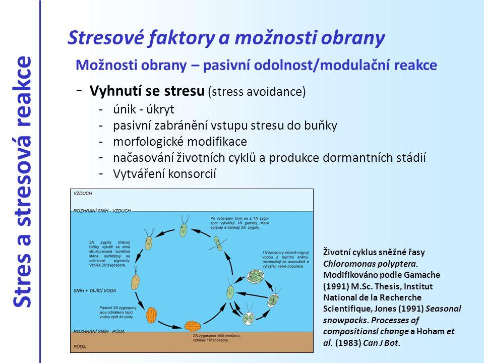Stresové faktory a možnosti obrany Možnosti obrany - aktivní odolnost/modifikační reakce - Obranné mechanismy (stress tolerance) -stresová reakce na daný faktor -poplachová fáze -restituční fáze -fáze otužování -fáze maximální odolnosti -fáze vyčerpání - fyziologické změny - biochemické změny Syntéza ochranných pigmentů u zygospory (cysty) sněžné řasy Chloromonas brevispina.