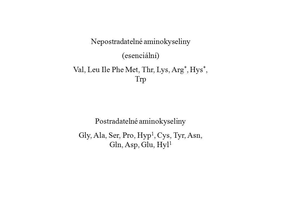 Nepostradatelné aminokyseliny (esenciální) Val, Leu Ile Phe Met, Thr, Lys, Arg *, Hys *, Trp Postradatelné aminokyseliny Gly, Ala, Ser, Pro, Hyp 1, Cy