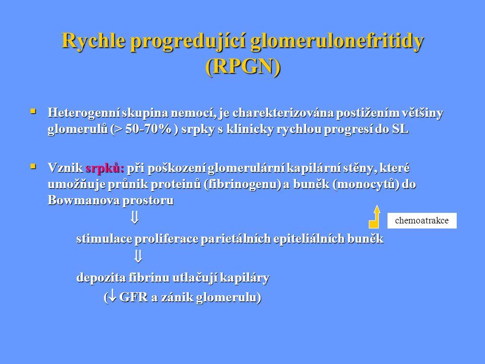Rychle progredující glomerulonefritidy (RPGN)  Heterogenní skupina nemocí, je charekterizována postižením většiny glomerulů (> 50-70% ) srpky s klini