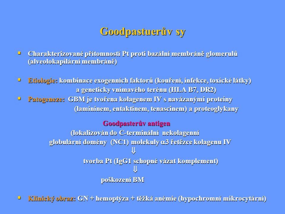 Goodpastuerův sy  Charakterizované přítomností Pt proti bazální membráně glomerulů (alveolokapilární membráně)  Etiologie: kombinace exogenních fakt