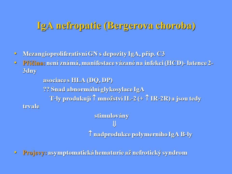 IgA nefropatie (Bergerova choroba) Mezangioproliferativní GN s depozity IgA, příp. C3 Mezangioproliferativní GN s depozity IgA, příp. C3 Příčina: není