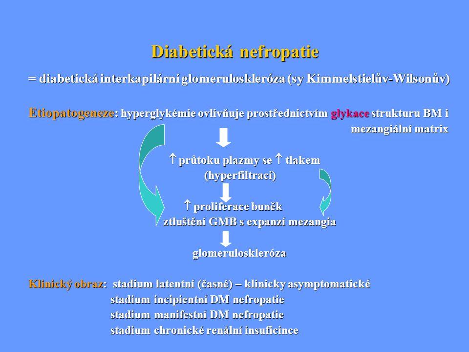 Diabetická nefropatie = diabetická interkapilární glomeruloskleróza (sy Kimmelstielův-Wilsonův) Etiopatogeneze: hyperglykémie ovlivňuje prostřednictví