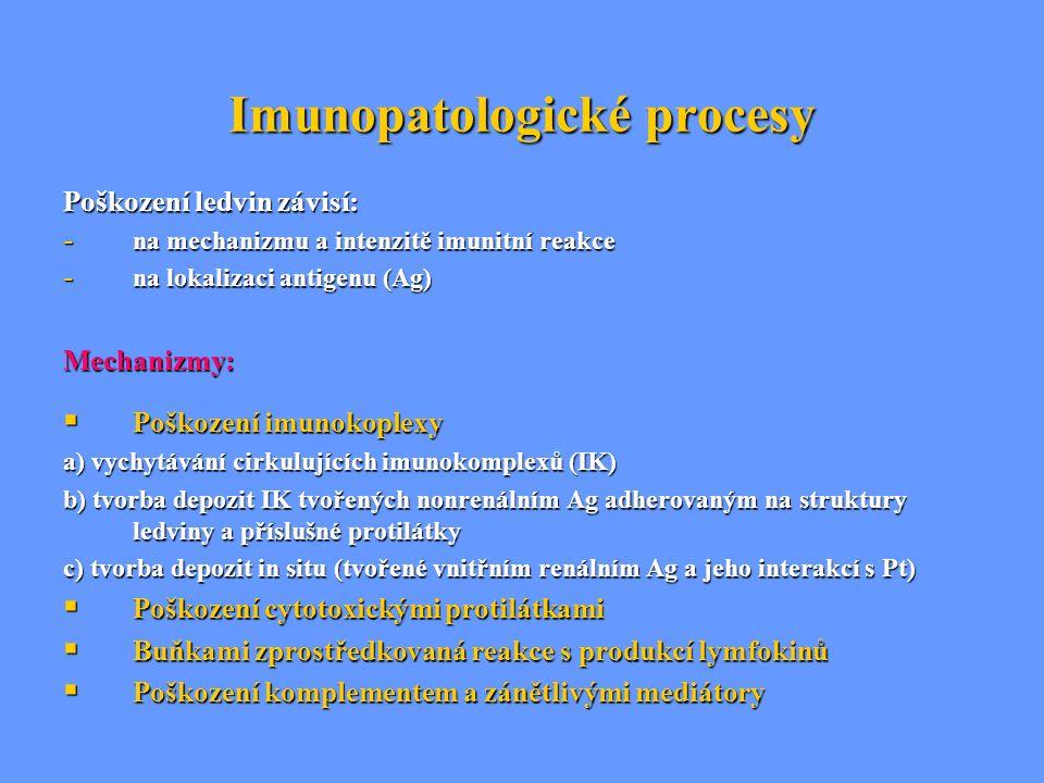 Diabetická nefropatie = diabetická interkapilární glomeruloskleróza (sy Kimmelstielův-Wilsonův) Etiopatogeneze: hyperglykémie ovlivňuje prostřednictvím glykace strukturu BM i mezangiální matrix mezangiální matrix  průtoku plazmy se  tlakem  průtoku plazmy se  tlakem (hyperfiltraci) (hyperfiltraci)  proliferace buněk  proliferace buněk ztluštění GMB s expanzí mezangia ztluštění GMB s expanzí mezangia glomeruloskleróza glomeruloskleróza Klinický obraz: stadium latentní (časné) – klinicky asymptomatické stadium incipientní DM nefropatie stadium incipientní DM nefropatie stadium manifestní DM nefropatie stadium manifestní DM nefropatie stadium chronické renální insuficince stadium chronické renální insuficince