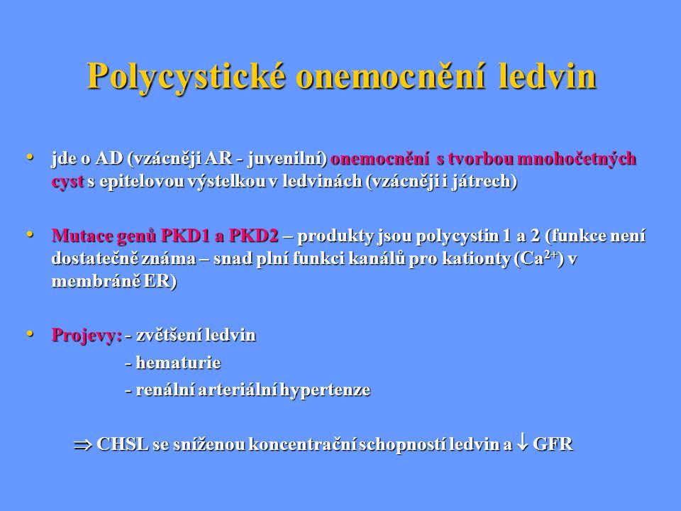 Polycystické onemocnění ledvin jde o AD (vzácněji AR - juvenilní) onemocnění s tvorbou mnohočetných cyst s epitelovou výstelkou v ledvinách (vzácněji