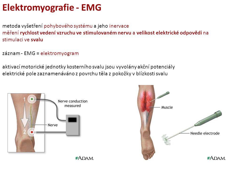 Elektromyografie - EMG metoda vyšetření pohybového systému a jeho inervace měření rychlost vedení vzruchu ve stimulovaném nervu a velikost elektrické odpovědi na stimulaci ve svalu záznam - EMG = elektromyogram aktivací motorické jednotky kosterního svalu jsou vyvolány akční potenciály elektrické pole zaznamenáváno z povrchu těla z pokožky v blízkosti svalu