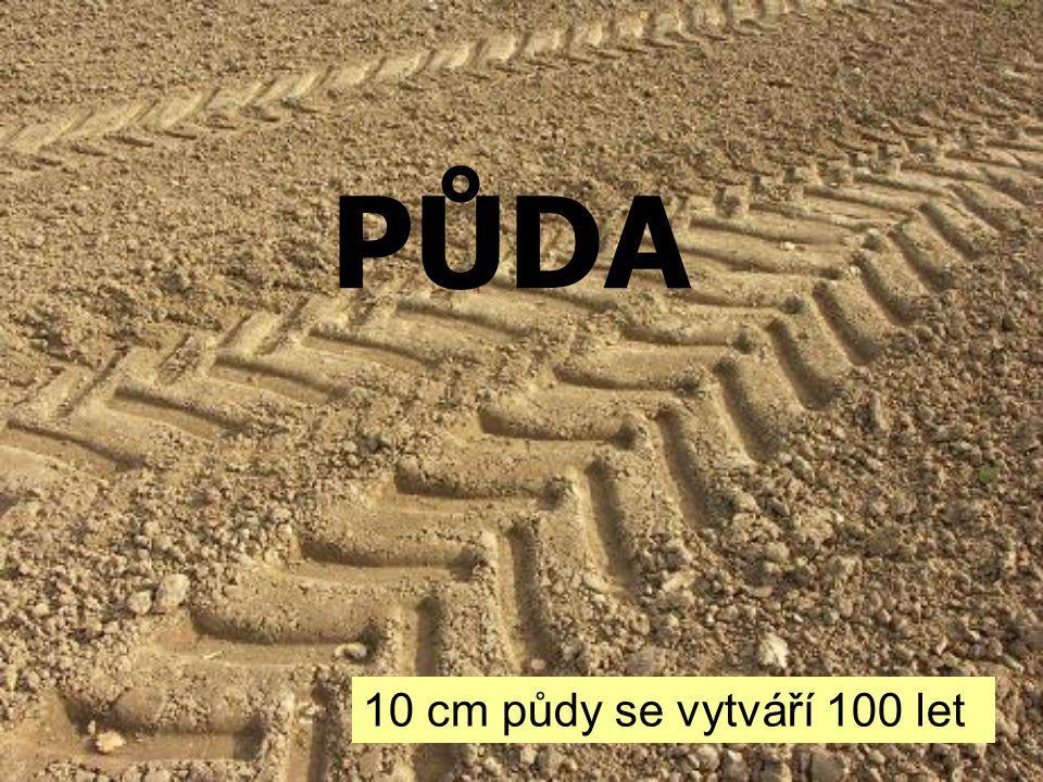 PŮDA 10 cm půdy se vytváří 100 let