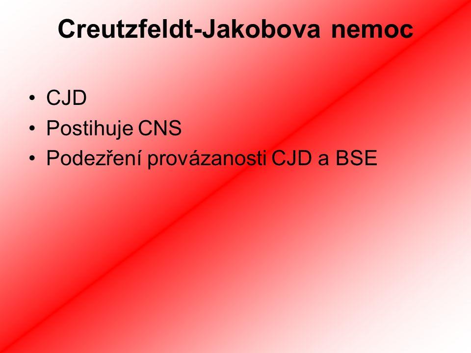 Creutzfeldt-Jakobova nemoc CJD Postihuje CNS Podezření provázanosti CJD a BSE