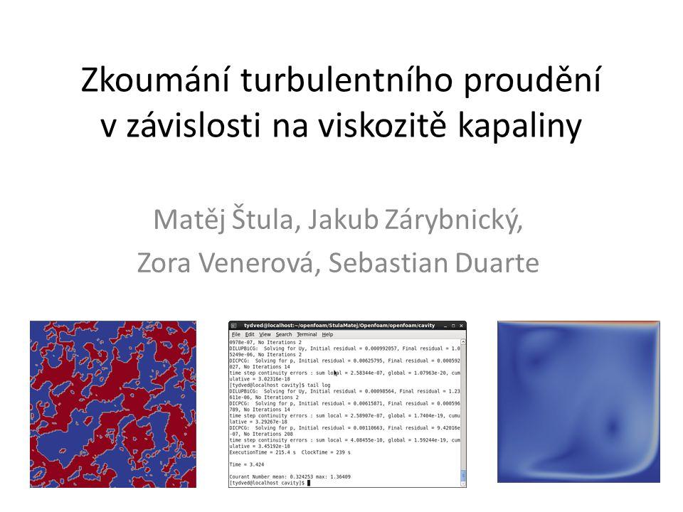 Zkoumání turbulentního proudění v závislosti na viskozitě kapaliny Matěj Štula, Jakub Zárybnický, Zora Venerová, Sebastian Duarte