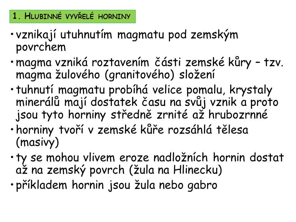 Ž ULA ( RŮZNÉ DRUHY ) 2