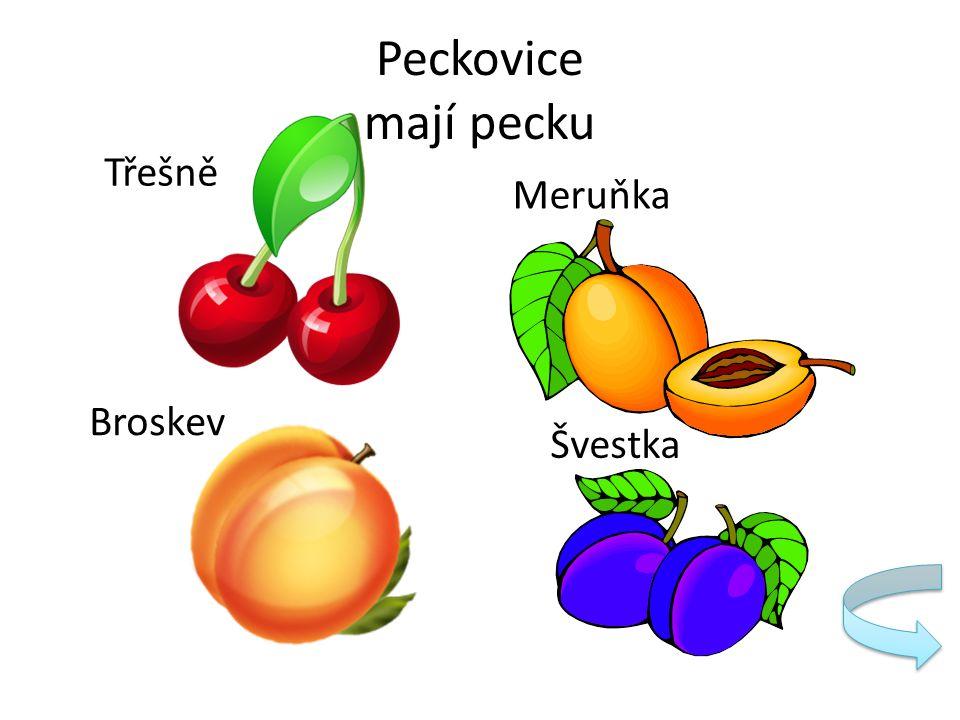 Peckovice mají pecku Třešně Meruňka Švestka Broskev