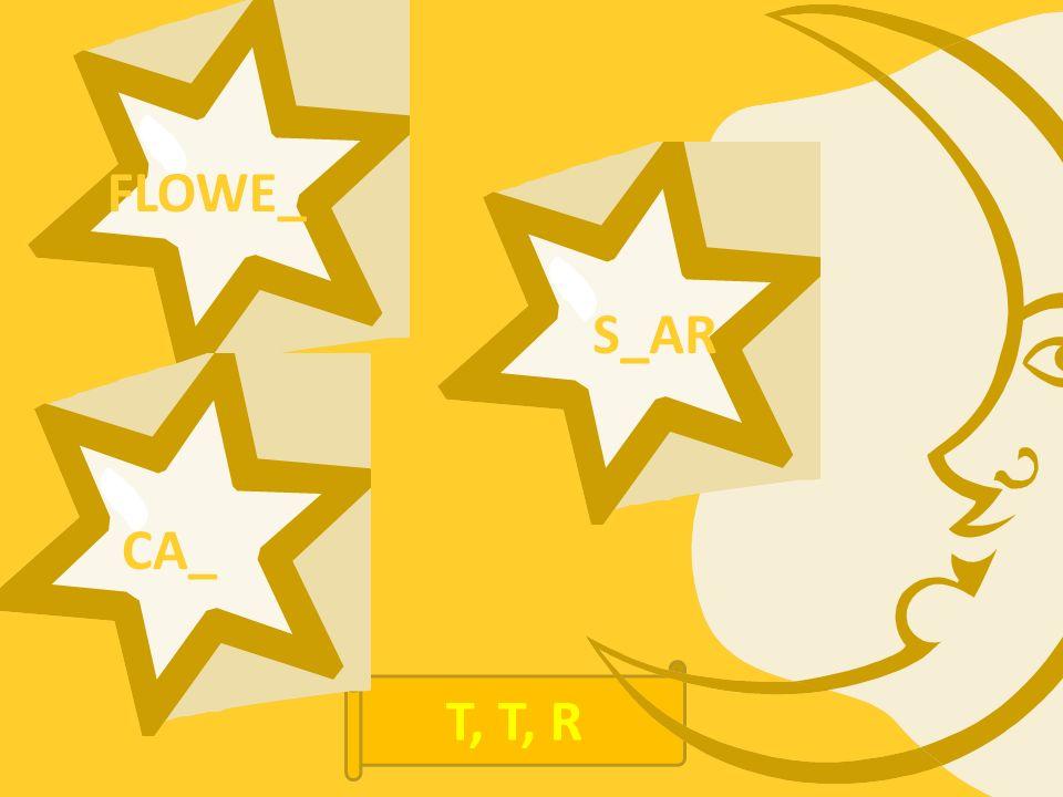 FLOWE_ CA_ S_AR T, T, R
