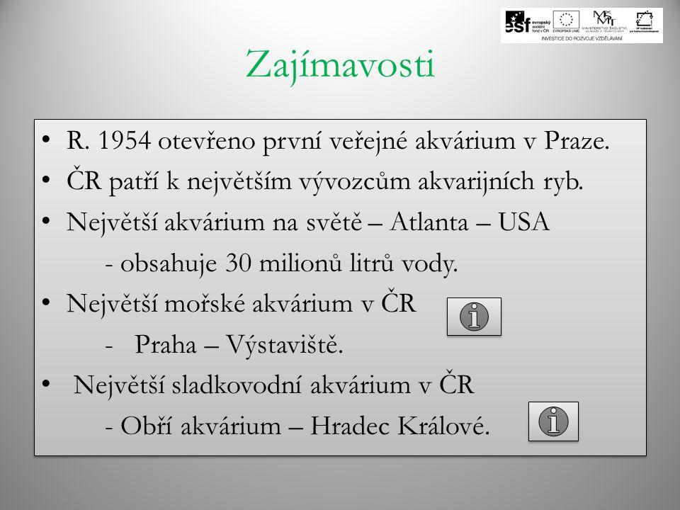 Zajímavosti R. 1954 otevřeno první veřejné akvárium v Praze. ČR patří k největším vývozcům akvarijních ryb. Největší akvárium na světě – Atlanta – USA