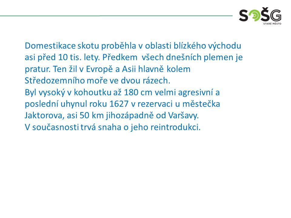 Vývoj chovu skotu v Čechách a na Moravě lze rozdělit do tří období.