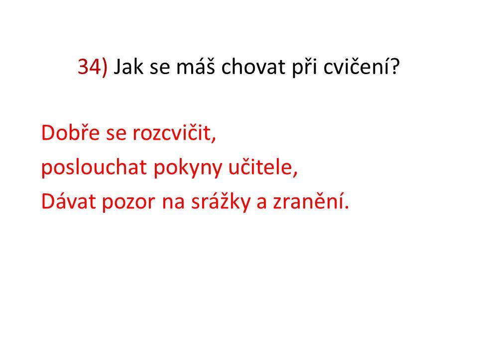 33) Můžeš lézt bez dovolení na nářadí? Ne.