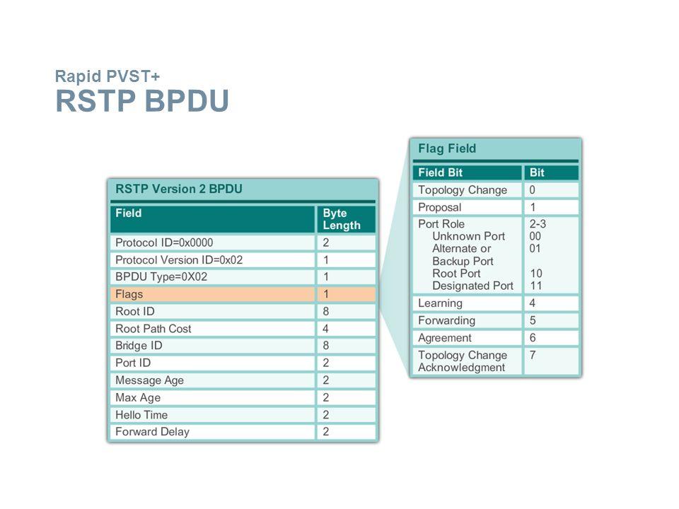 Rapid PVST+ RSTP BPDU