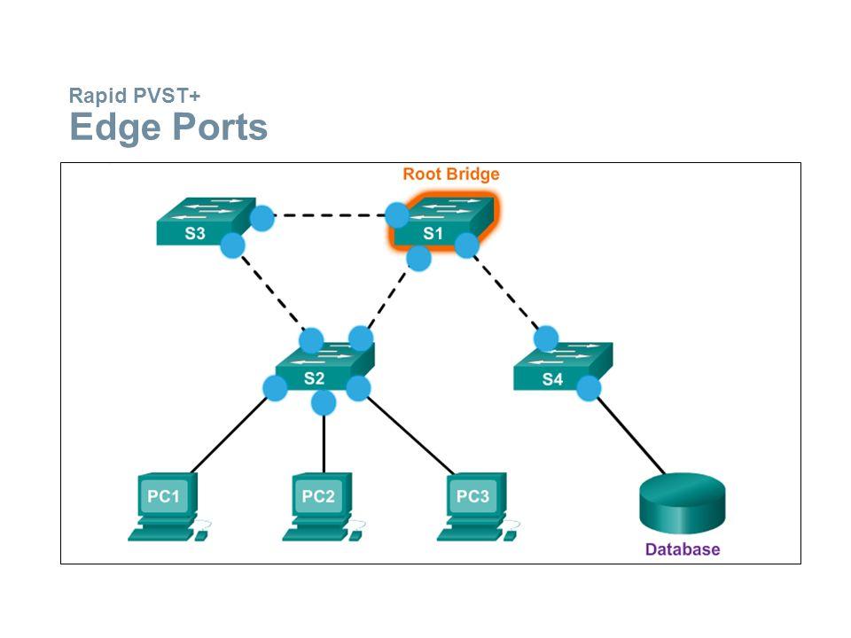 Rapid PVST+ Edge Ports