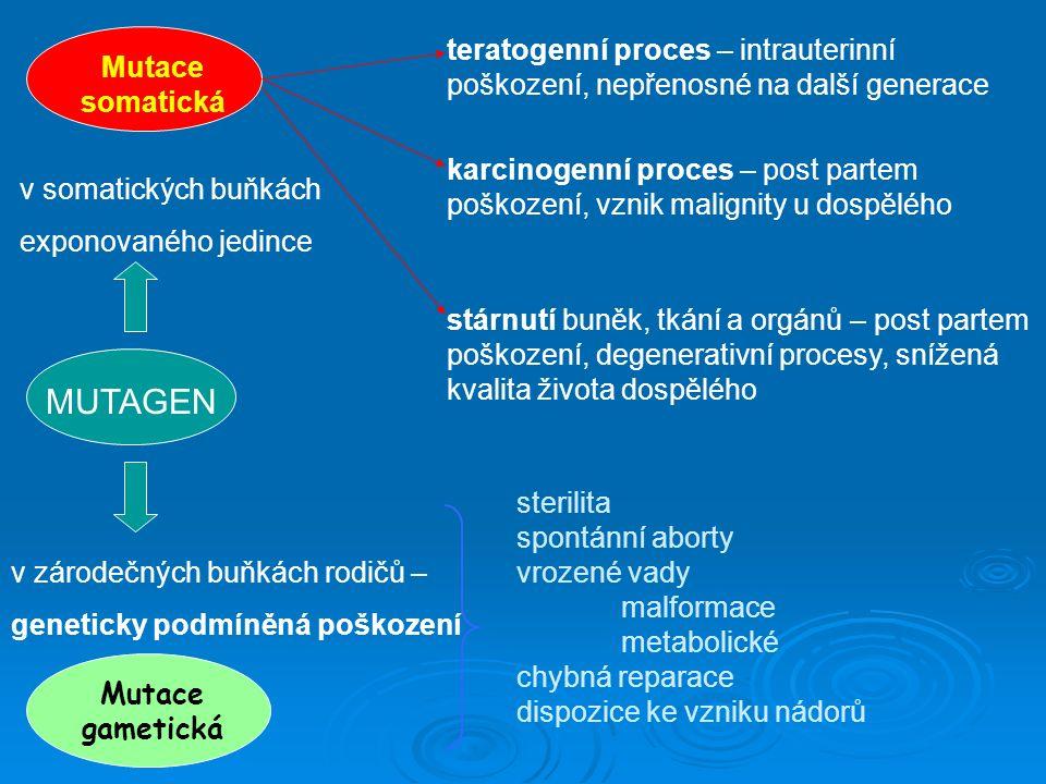 MUTAGEN Mutace gametická Mutace somatická teratogenní proces – intrauterinní poškození, nepřenosné na další generace karcinogenní proces – post partem