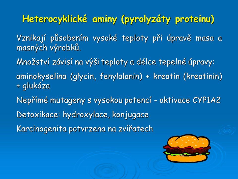Heterocyklické aminy (pyrolyzáty proteinu) Vznikají působením vysoké teploty při úpravě masa a masných výrobků. Množství závisí na výši teploty a délc