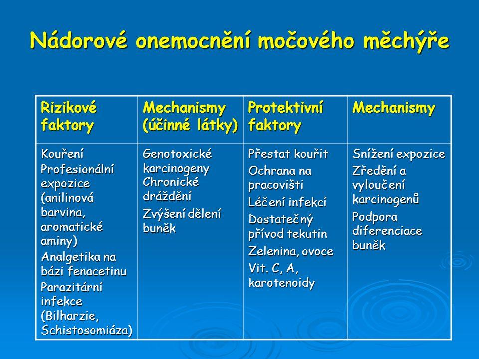 Nádorové onemocnění močového měchýře Rizikové faktory Mechanismy (účinné látky) Protektivní faktory Mechanismy Kouření Profesionální expozice (anilino