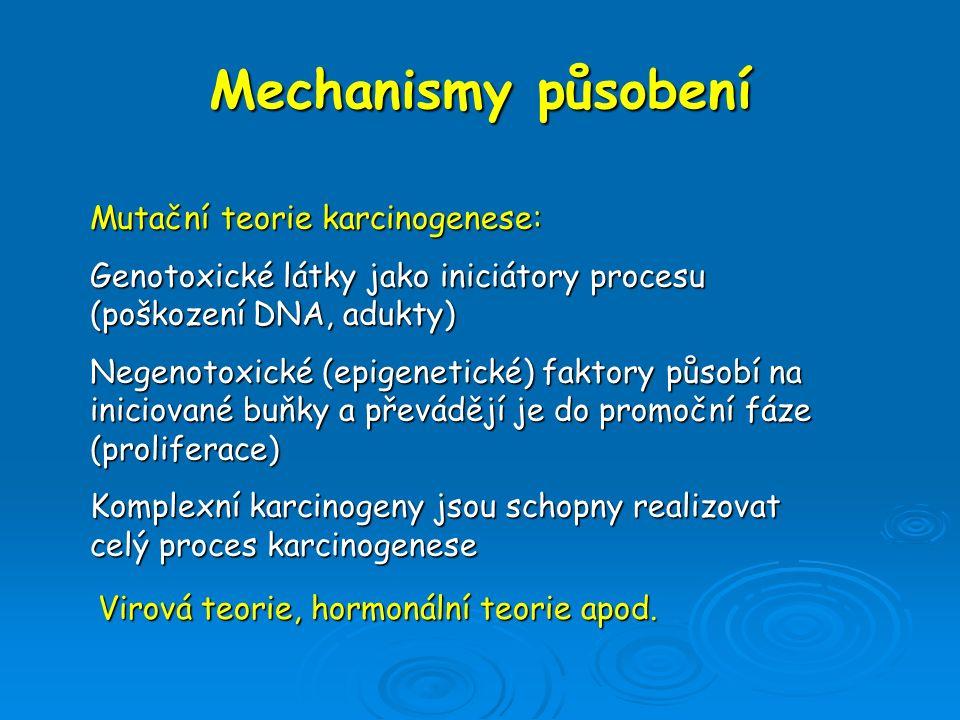 Mechanismy působení Mutační teorie karcinogenese: Genotoxické látky jako iniciátory procesu (poškození DNA, adukty) Negenotoxické (epigenetické) fakto
