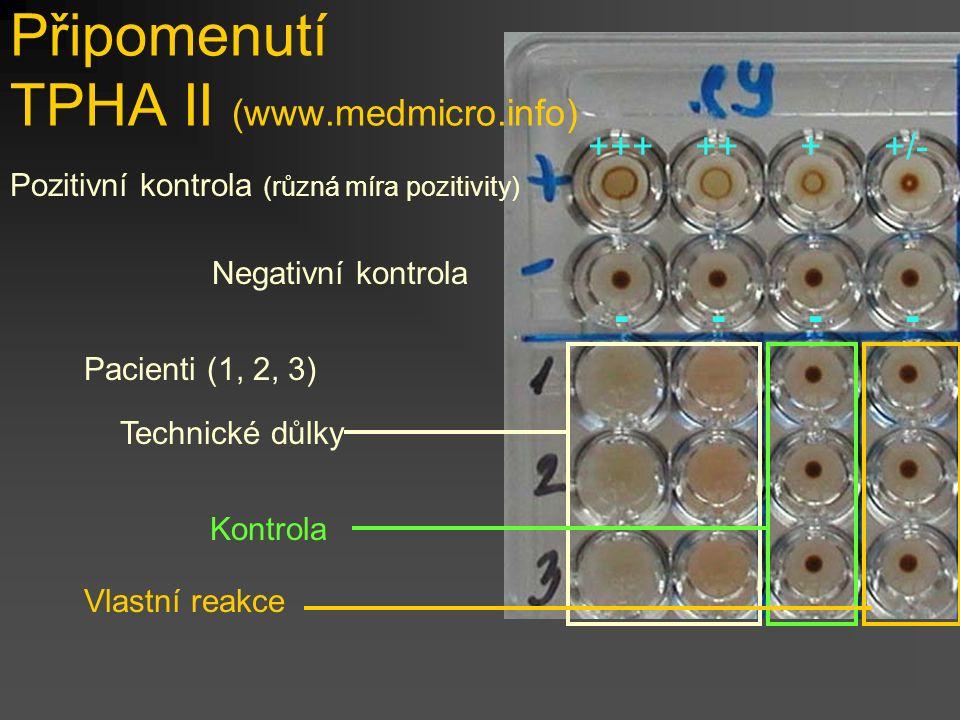 +++ ++ + +/- - - - - Pozitivní kontrola (různá míra pozitivity) Pacienti (1, 2, 3) Připomenutí TPHA II (www.medmicro.info) Negativní kontrola Technické důlky Kontrola Vlastní reakce