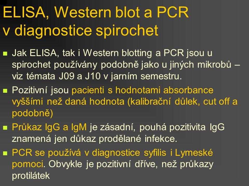 ELISA, Western blot a PCR v diagnostice spirochet Jak ELISA, tak i Western blotting a PCR jsou u spirochet používány podobně jako u jiných mikrobů – v