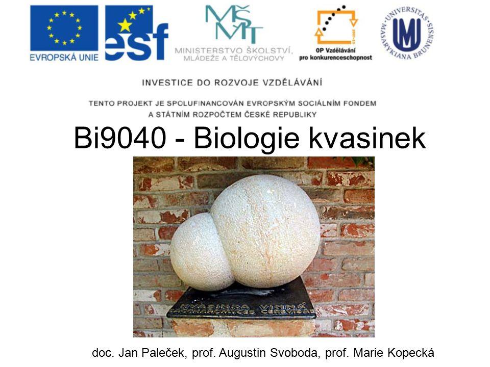 Bi9040 - Biologie kvasinek doc. Jan Paleček, prof. Augustin Svoboda, prof. Marie Kopecká