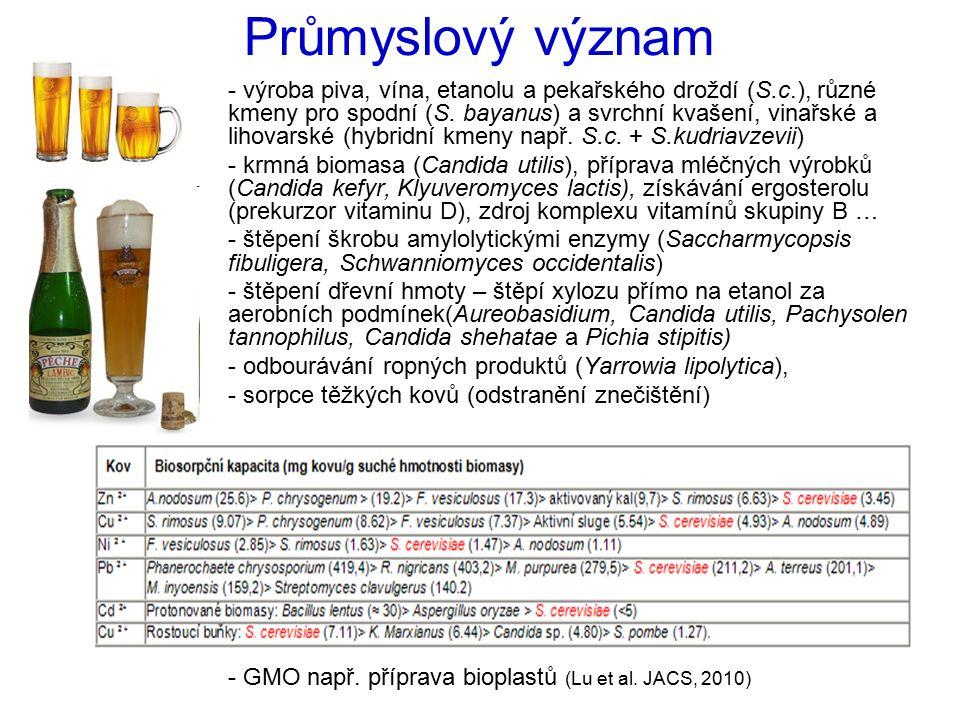 Průmyslový význam - výroba piva, vína, etanolu a pekařského droždí (S.c.), různé kmeny pro spodní (S. bayanus) a svrchní kvašení, vinařské a lihovarsk