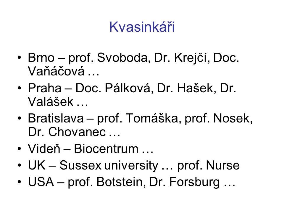 Kvasinkáři Brno – prof. Svoboda, Dr. Krejčí, Doc. Vaňáčová … Praha – Doc. Pálková, Dr. Hašek, Dr. Valášek … Bratislava – prof. Tomáška, prof. Nosek, D