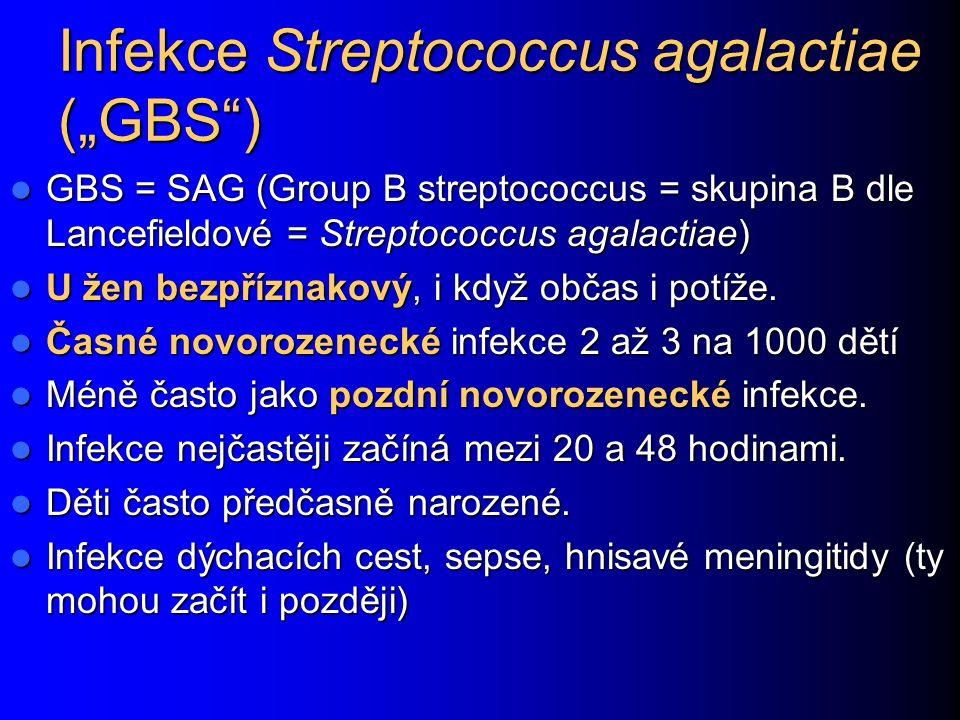 "Infekce Streptococcus agalactiae (""GBS ) GBS = SAG (Group B streptococcus = skupina B dle Lancefieldové = Streptococcus agalactiae) GBS = SAG (Group B streptococcus = skupina B dle Lancefieldové = Streptococcus agalactiae) U žen bezpříznakový, i když občas i potíže."