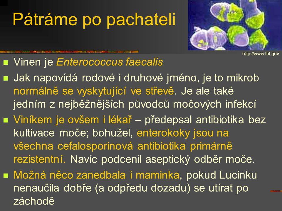 Více o enterokocích Dnes jich rozeznáváme desítky druhů Všechny mohou být nalézány ve stolici (jako normální mikroflóra) v močovém měchýři (jako patogeny) v pochvě (asymptomaticky nebo symptomaticky) občas i jinde (rány, krevní řečiště) Ze dvou nejběžnějších druhů E.