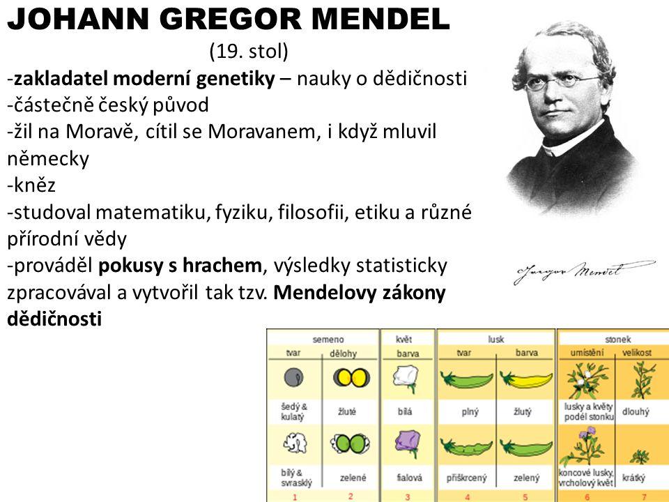 JOHANN GREGOR MENDEL (19. stol) -zakladatel moderní genetiky – nauky o dědičnosti -částečně český původ -žil na Moravě, cítil se Moravanem, i když mlu