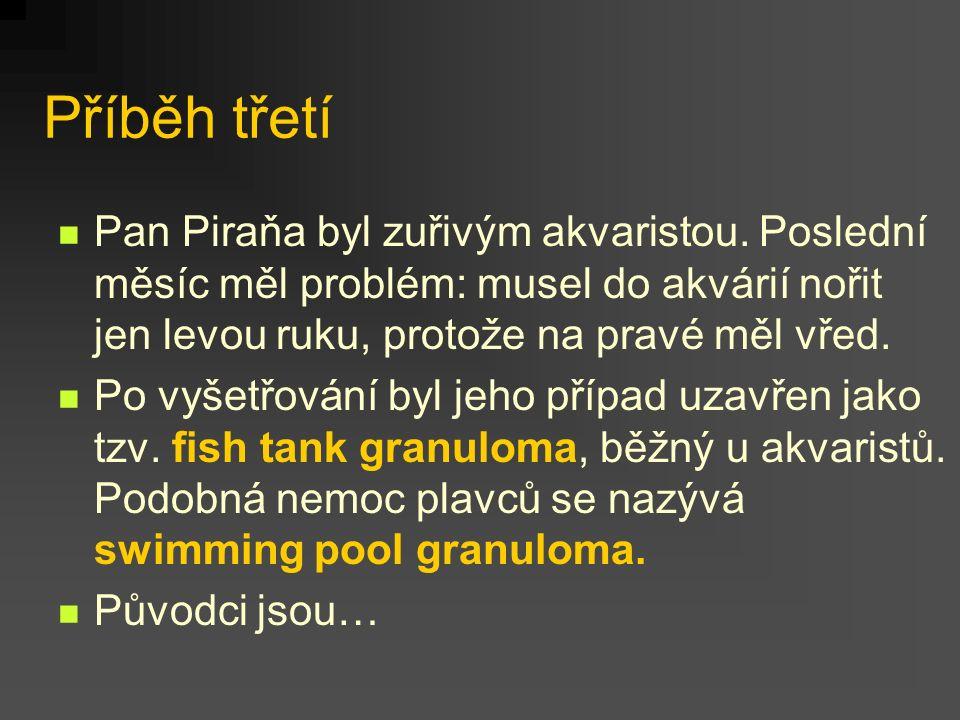 Příběh třetí Pan Piraňa byl zuřivým akvaristou. Poslední měsíc měl problém: musel do akvárií nořit jen levou ruku, protože na pravé měl vřed. Po vyšet