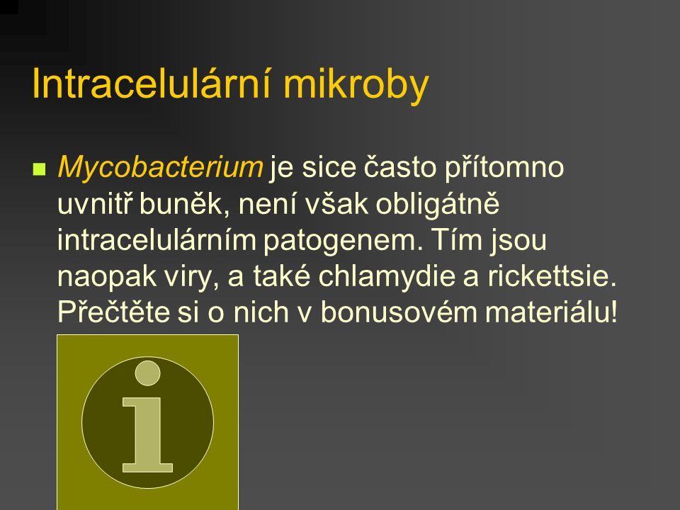 Jednotlivé druhy 1 Bartonella quintana (dříve Rochalimea) je původcem volyňské či zákopové horečky, známé z I.