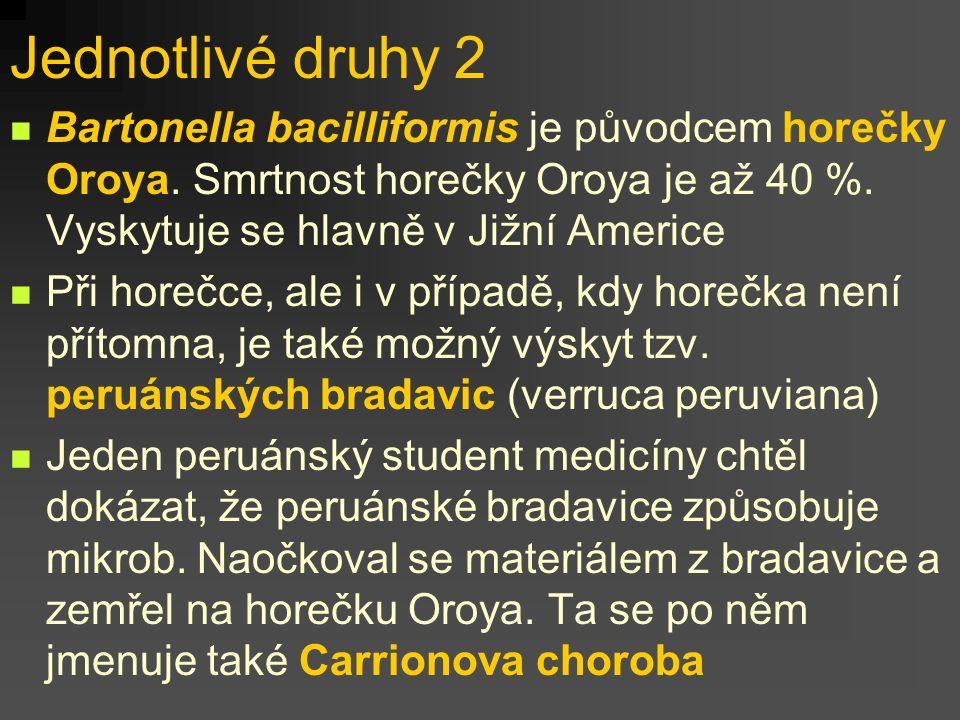 Jednotlivé druhy 2 Bartonella bacilliformis je původcem horečky Oroya. Smrtnost horečky Oroya je až 40 %. Vyskytuje se hlavně v Jižní Americe Při hore