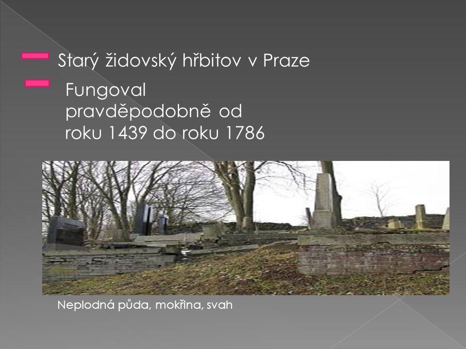 Starý židovský hřbitov v Praze Fungoval pravděpodobně od roku 1439 do roku 1786 Neplodná půda, mokřina, svah