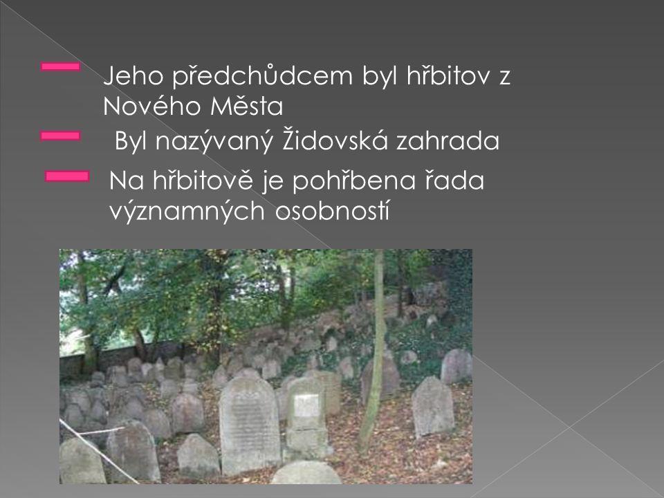 Jeho předchůdcem byl hřbitov z Nového Města Byl nazývaný Židovská zahrada Na hřbitově je pohřbena řada významných osobností