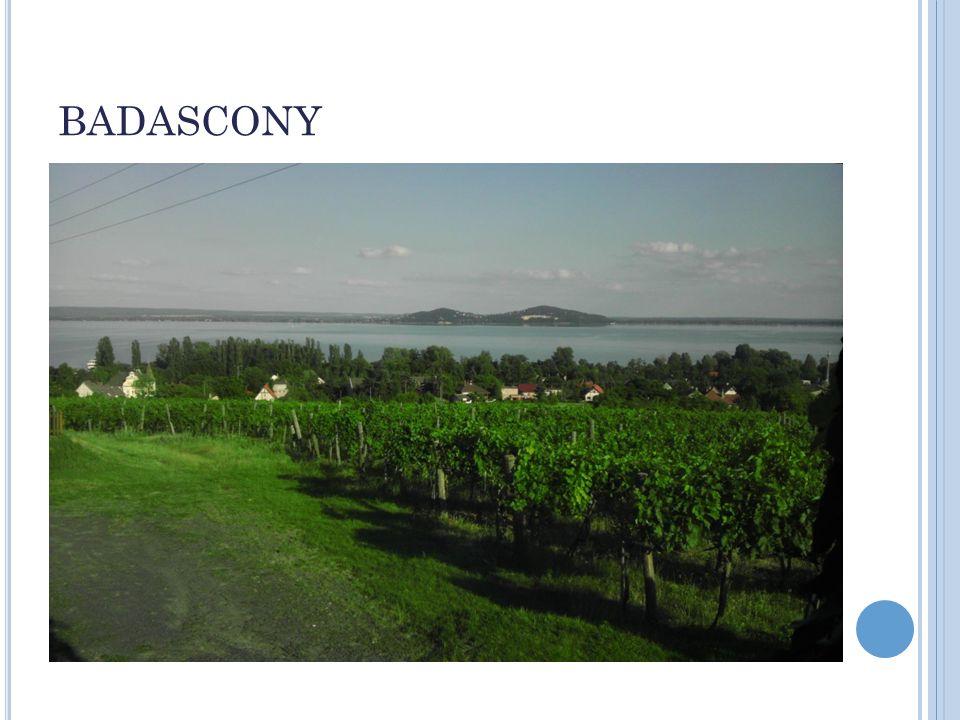 NEJVĚTŠÍ JEZERO: BALATON Rozloha 596 km² Délka 78 km Šířka 12 km Max.