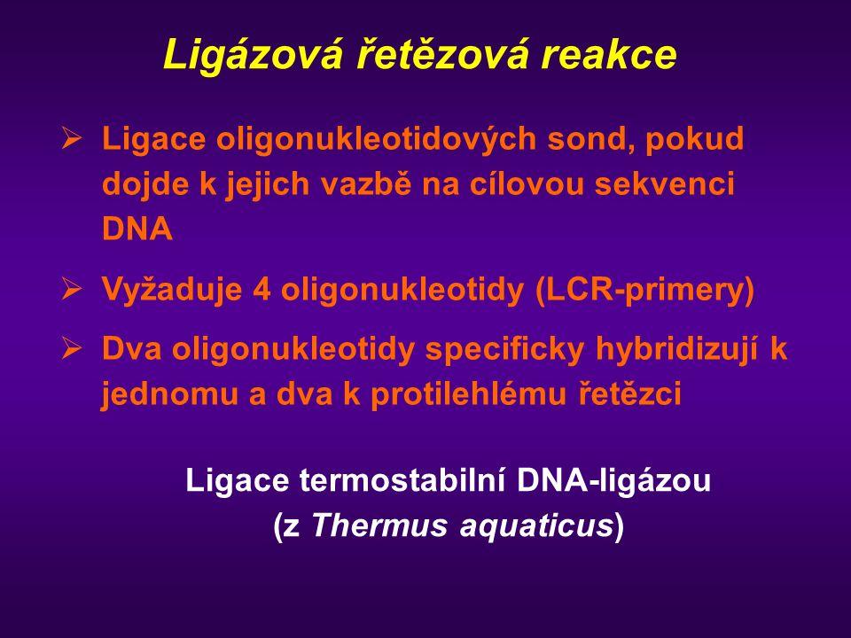 Ligázová řetězová reakce   Ligace oligonukleotidových sond, pokud dojde k jejich vazbě na cílovou sekvenci DNA   Vyžaduje 4 oligonukleotidy (LCR-p