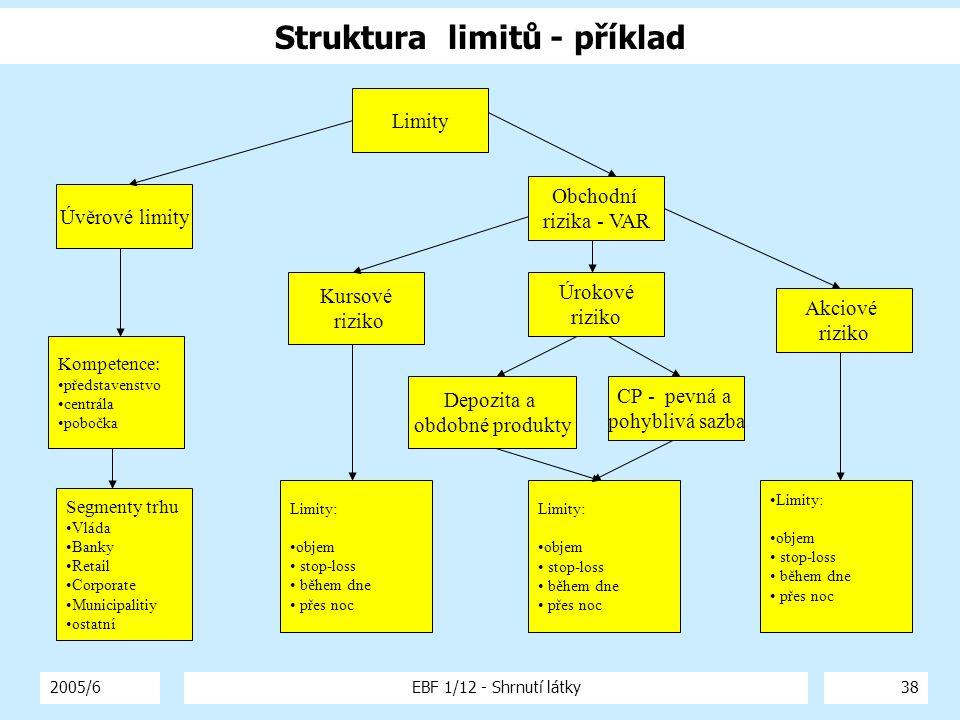 2005/6EBF 1/12 - Shrnutí látky38 Struktura limitů - příklad Limity Úvěrové limity Obchodní rizika - VAR Kursové riziko Úrokové riziko Akciové riziko L