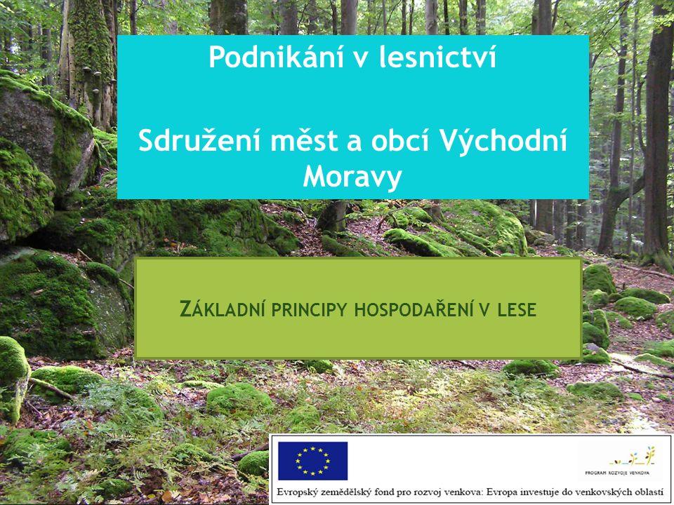 Z ÁKLADNÍ PRINCIPY HOSPODAŘENÍ V LESE Podnikání v lesnictví Sdružení měst a obcí Východní Moravy