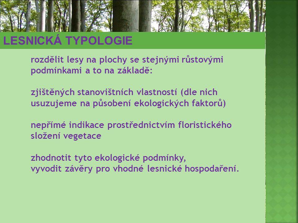 LESNICKÁ TYPOLOGIE