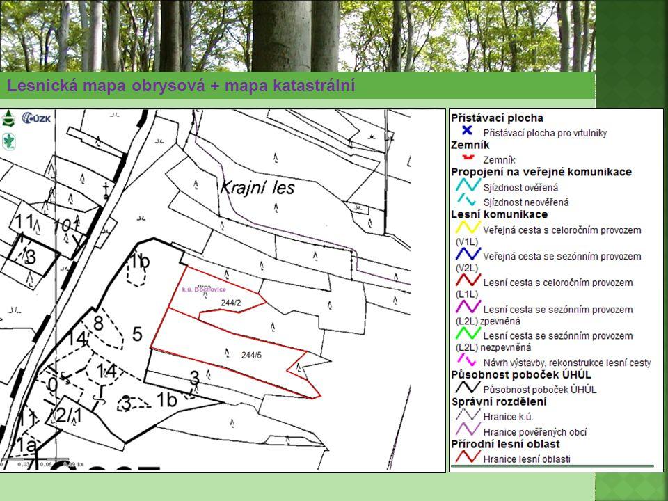 Lesnická mapa obrysová + mapa katastrální