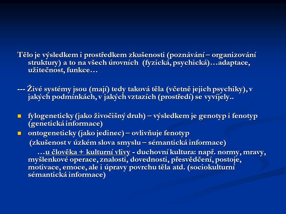 Role těla v prostředí kultury a TK Svým tělem (aktivitou, pohybem..