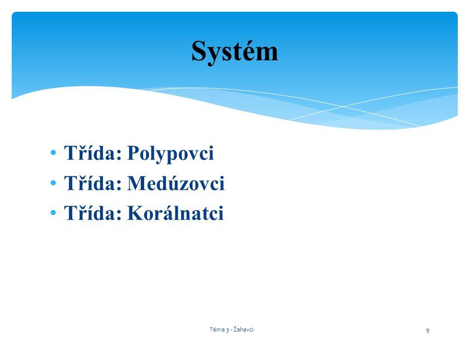 Třída: Polypovci Třída: Medúzovci Třída: Korálnatci Systém Téma 3 - Žahavci9