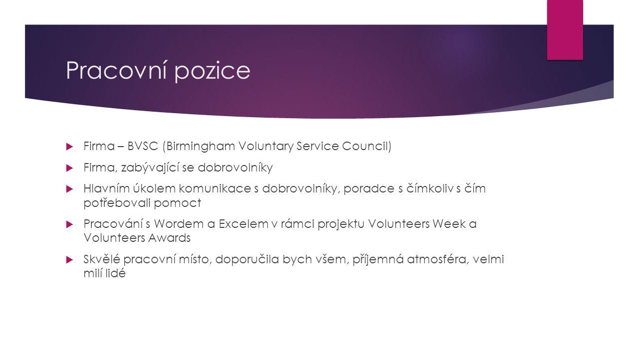 Pracovní pozice  Firma – BVSC (Birmingham Voluntary Service Council)  Firma, zabývající se dobrovolníky  Hlavním úkolem komunikace s dobrovolníky,