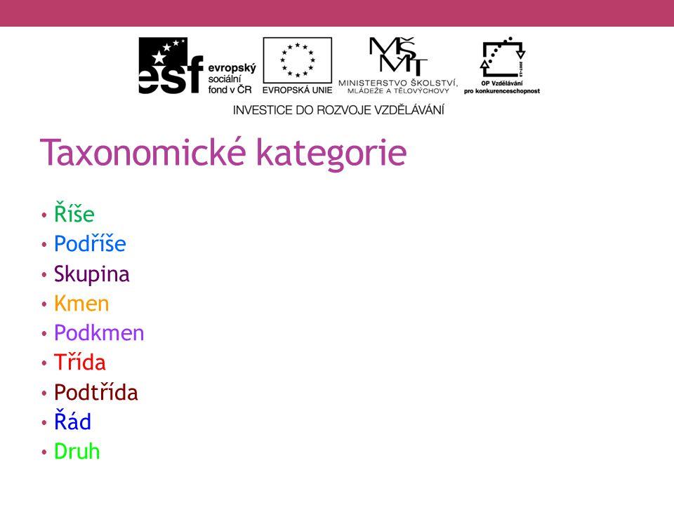 Slide 10 – babočka paví oko: DARKONE.wikipedia.cz [online].
