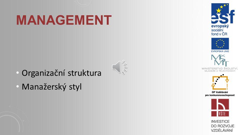 Organizační struktura Manažerský styl MANAGEMENT