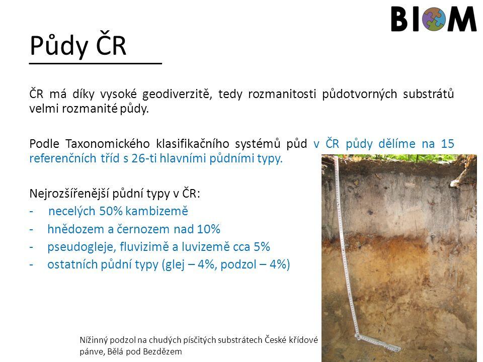 Půdy ČR ČR má díky vysoké geodiverzitě, tedy rozmanitosti půdotvorných substrátů velmi rozmanité půdy. Podle Taxonomického klasifikačního systémů půd